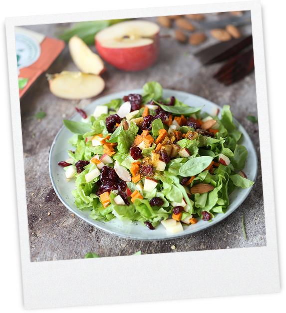 Herbstlicher  Paprika-Tomate Apfel Salat